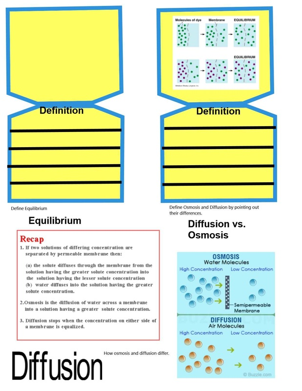 Diffusion and Osmosis Pages - On Beyond Z